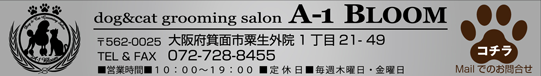 dog&cat grooming salon A-1 BLOOM